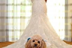 Wedding2569
